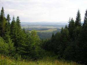 Панорама Витоку Дністра